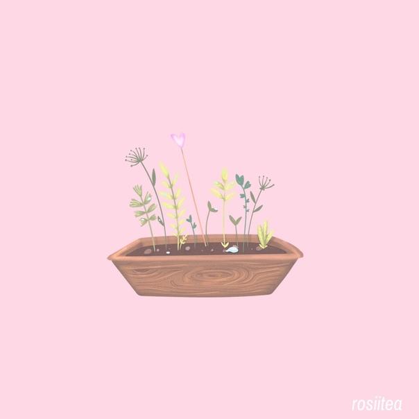 следи за своим садом — вот моё правило. ухаживай за цветами, а не гоняйся за бабочками, и тогда бабочки прилетят к тебе сами. так жизнь и устроена. (с) мэттью