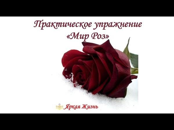 МЕДИТАЦИЯ Практическое упражнение Мир Роз для усиления потока Любви и Изобилия в жизни❤️