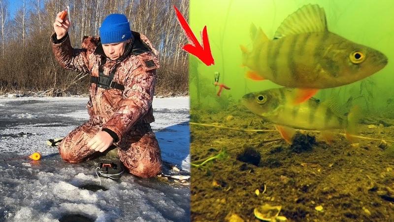 ДА сколько здесь Рыбы в этой Лунке!!Раздача Окуня на Чертика! Зимняя рыбалка 2018.Подводная съемка.