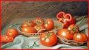 Выращивание рассады помидоров. Самые вкусные сорта томатов