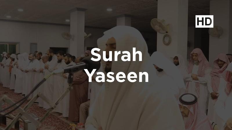 Слушаем Коран перед сном (СУРА ЯСИН)