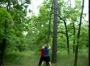 Валка дерева!Часть 1