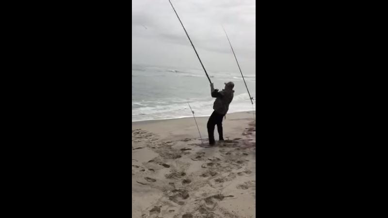 Рыбалка с лучшими друзьями