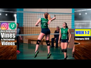 Best Volleyball Vines of February 2019. WEEK 1-2.