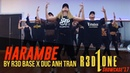 Doumbfoundead Harambe Rehearsal and Performance by R3D BASE Choreography by Duc Anh Tran