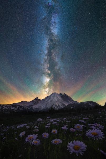 Ночное небо над Национальным парком Маунт Рейнир