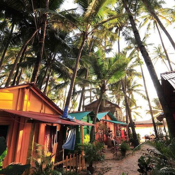 Туры в Гоа на 12 ночей с завтраками от 24000 c человека в ноябре