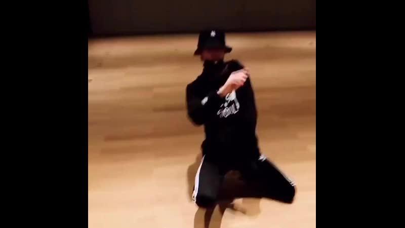 китайская собачка приколы танцует тиктоник 2019