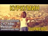 Куркумин польза и вред, как принимать Turmeric Curcumin Proven Health Benefits