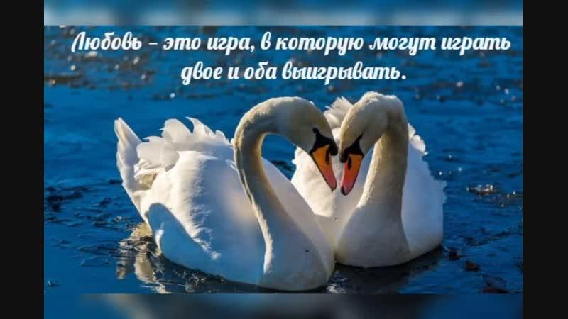 Video_2019_Jan_21_14_58_59.mp4