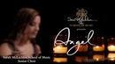 Sarah McLachlan New Angel Video and PSA