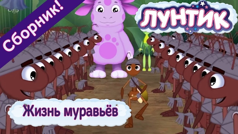 Жизнь муравьёв 🐜 Лунтик 🐜 Сборник мультфильмов 2018
