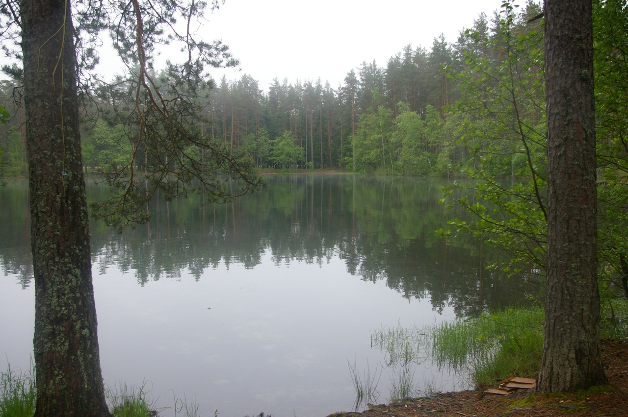 По Карельскому перешейку. 7 красивых лесных озер у станции Яппиля. Очарование северной природы