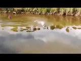 Прикол/) Рыбалка с помощью RC кораблика