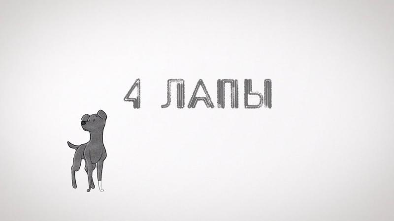 «4 лапы» побывала в гостях у актера театра кукол и на первой в Кургане площадке для выгула собак