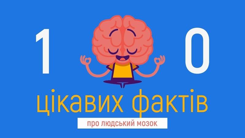 10 Цікавих Фактів про людський мозок, які ви могли не знати / Ягич Вікторія