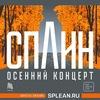 21 ноября | Сплин в Саратове - Театр Драмы