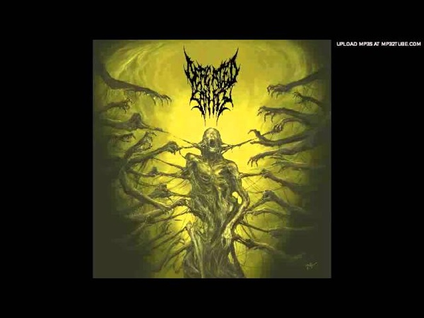 Defeated Sanity - Verblendung (Passages Into Deformity) NEW