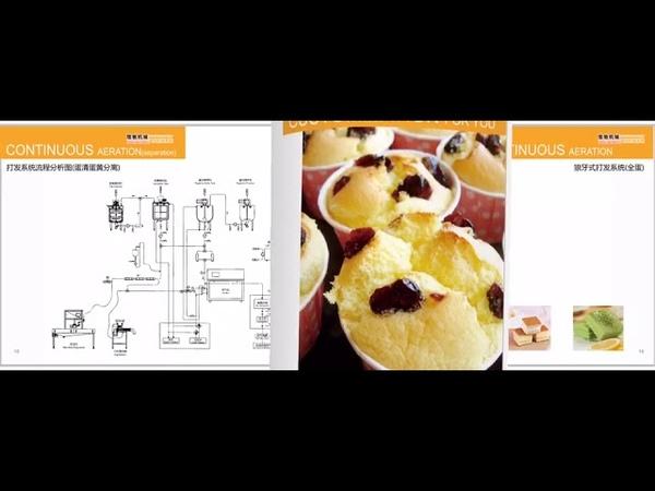 Cake dough aeration Mixers Cake Aeration System cake aerator