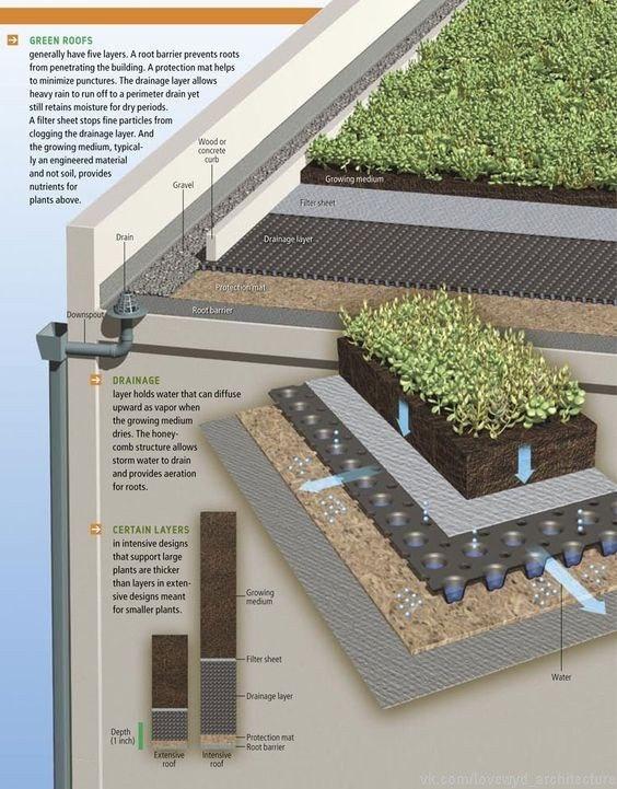 Схемы и конструкции зеленых крыш.