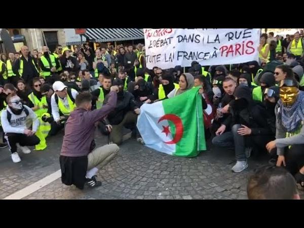 Justice Algérie Gilets Jaunes PAS l'Info