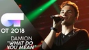 WHAT DO YOU MEAN - Damion | Gala 0 | OT 2018