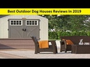 Top 3 Best Outdoor Dog Houses Reviews In 2019