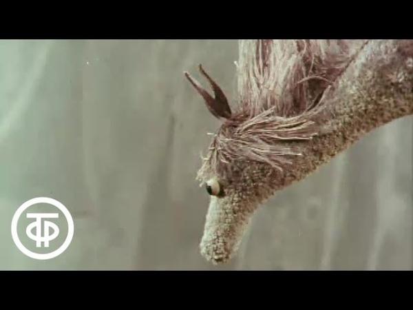 Большой секрет для маленькой компании. Летающие лошади (1979)