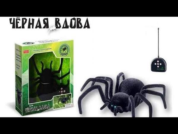 Нападение Паука Чёрная Вдова Attack Spider Black Widow
