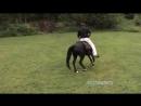 Calming_Down_a_Hot_Horse.mp4