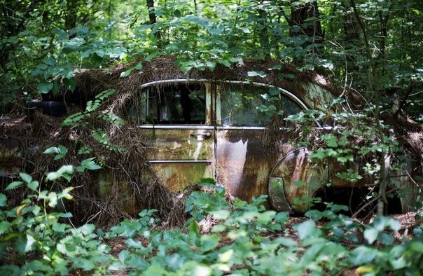 Old Car City лес, заполненный автомобильной классикой В штате Джорджия, на юго-востоке США, обычный дед по имени Уолтер Дин Льюис владеет Old Car City крупнейшим музеем антикварных автомобилей.