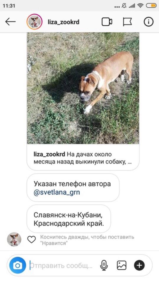 Москва, Саяна, сука 23.06.2014 FJ2MmOdHVTw