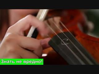 Великолепная игра на музыкальных инструментах. Игра на скрипке. Игра на скрипке и рояле