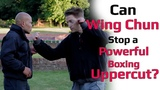 can wing chun stops a powerful boxing Uppercut