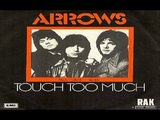 Arrows Touch Too Much Pop , Glam Rock 1974