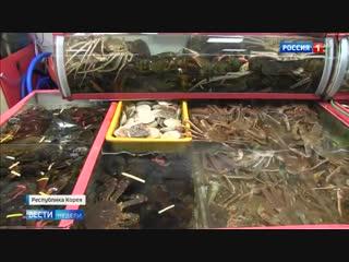 Оптовая цена на красную рыбу — лосось — в России упала почти вдвое.