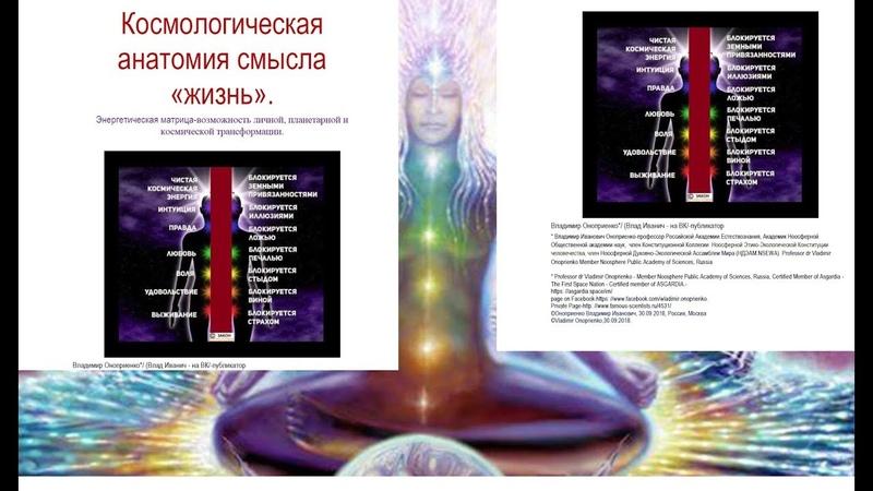 Космологическая анатомия смысла ЖИЗНЬ