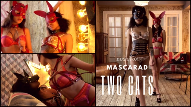TWO CATS (MASCARAD)