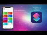 Команды Apple Siri Shortcuts