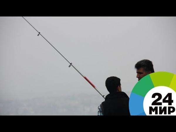 Рыбалка на Неве: любители «стрит-фишинга» открыли осенний сезон в Петербурге - МИР 24