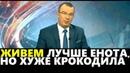 Юрий Пронько: ЖИВЕМ ЛУЧШЕ ЕНОТА, НО ХУЖЕ КРОКОДИЛА