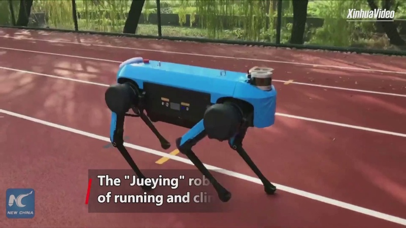 China's new four-legged robot capable of running, climbing stairs