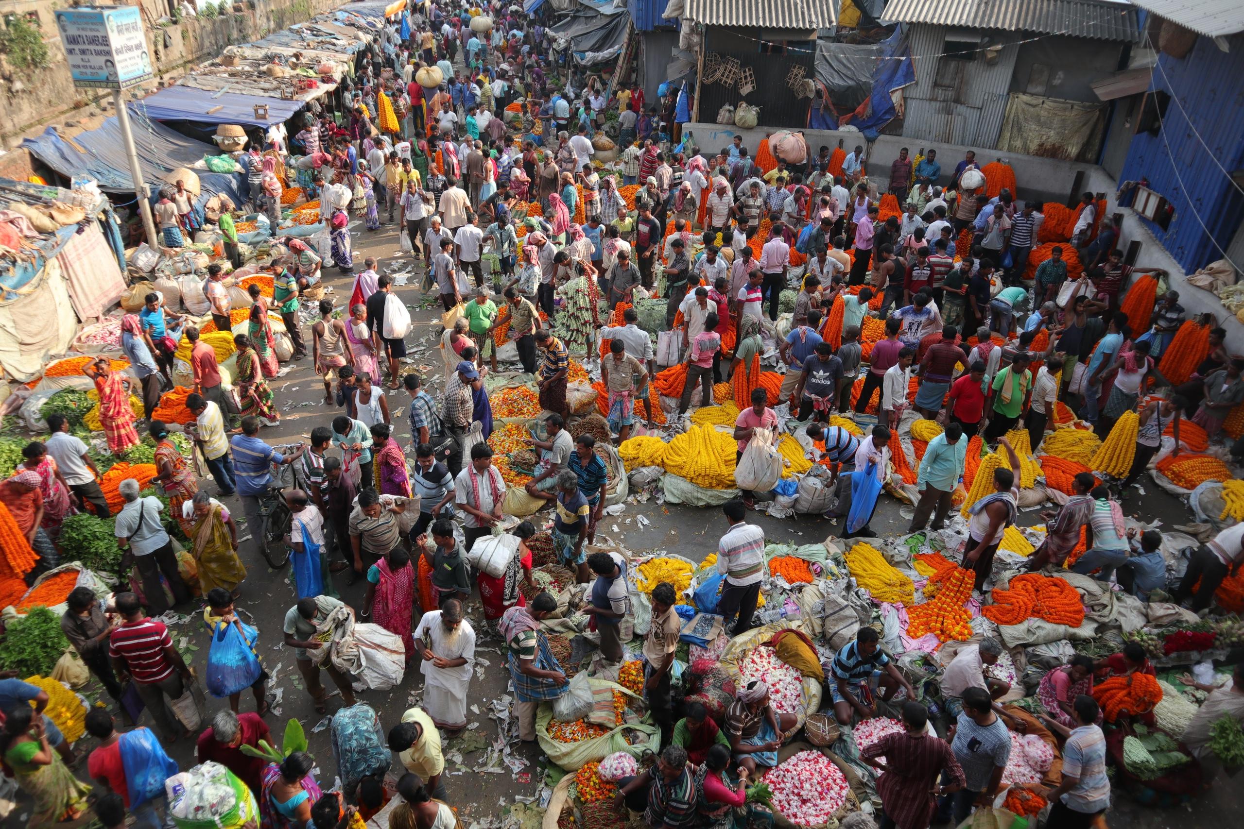 Тут в Индии что-то очень хорошо заходит ранний Гребенщиков