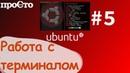 Linux основы. Терминал в Ubuntu. Команда rename.