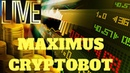 The Maximus Cryptobot Quick Trading Session Profit Loss Calculation! Live Exchanging - YouTube