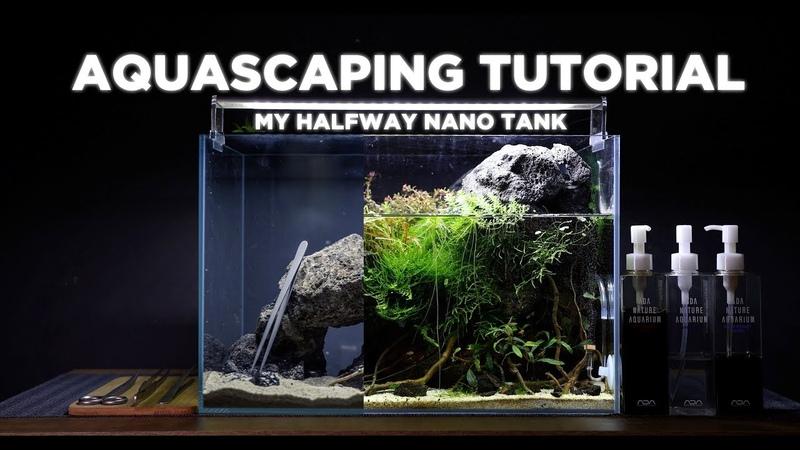 HalfWay nano aquarium - Cinematic Aquascaping TUTORIAL