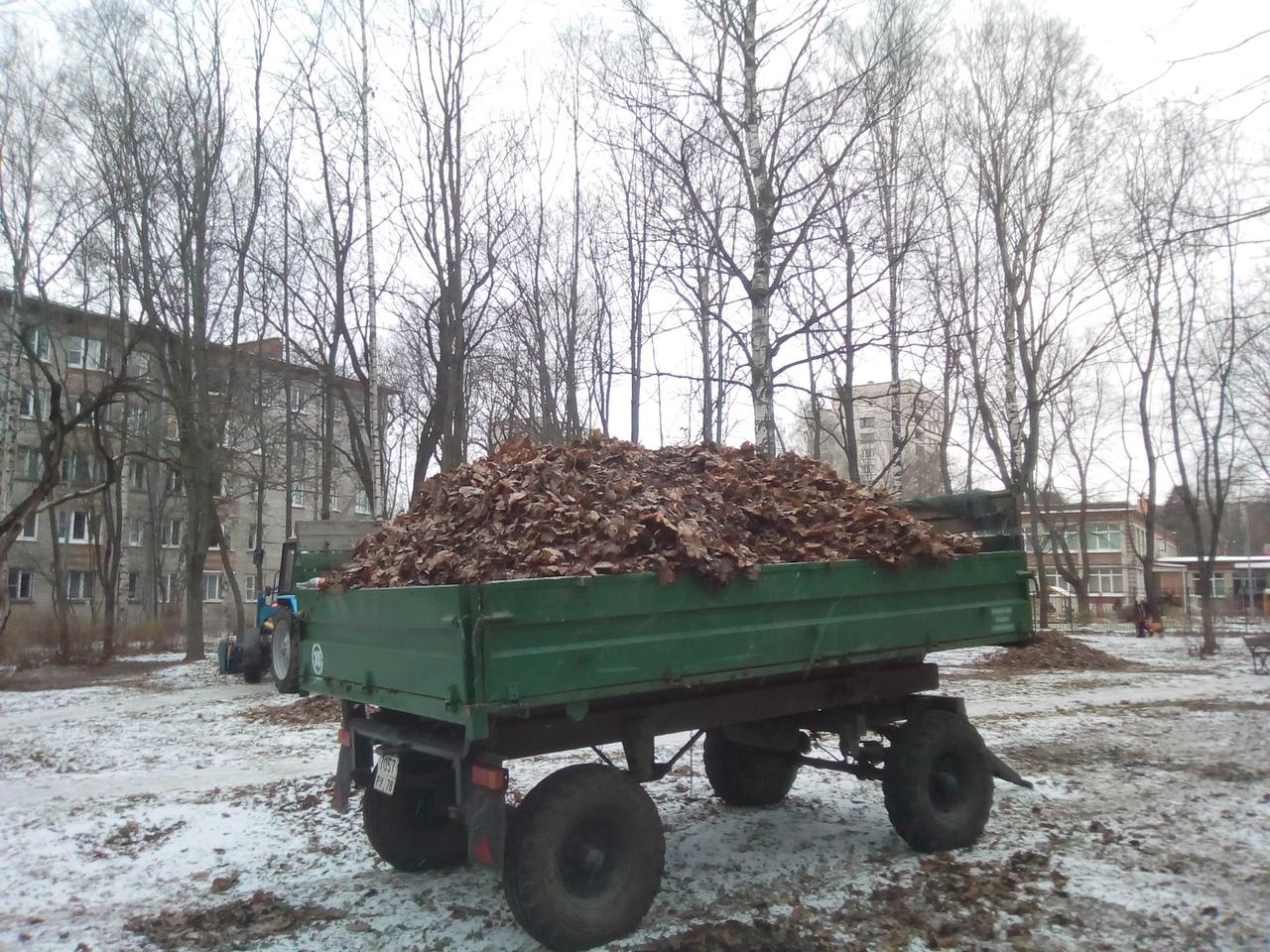 Маразм в Петербурге. Уборка листьев. Как навредить природе и распилить деньги налогоплательщиков.