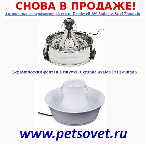https://pp.userapi.com/c851232/v851232750/13e348/TRz6cM6GSF4.jpg