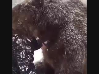 Монах и медведь (Болгария).