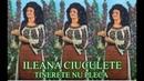 ILEANA CIUCULETE album - Tinerete nu pleca 1984 Full